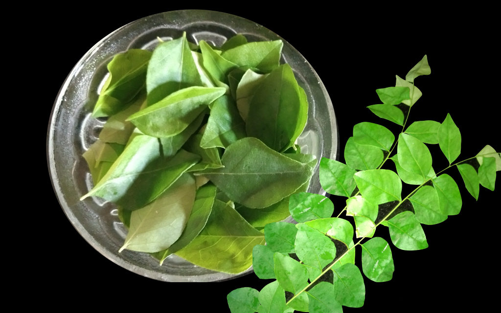 How to Promote Hair Growth with Curry Leaves, Magic Of Curry Leaves On Hair