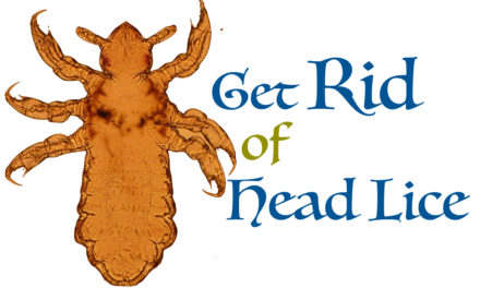 How to Get Rid of Head Lice: Amazing 5 Remedies to Get Rid of Lice
