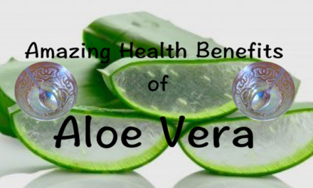 एलोवेरा (Aloe Vera): रखे आपकी सेहत का ख्याल, 10 Amazing Health Benefits of Aloe Vera