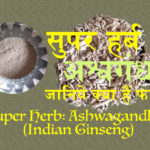 अश्वगंधा के लाभ: Benefits of Ashwagandha (Indian Ginseng, Poison Gooseberry or Winter Cherry)