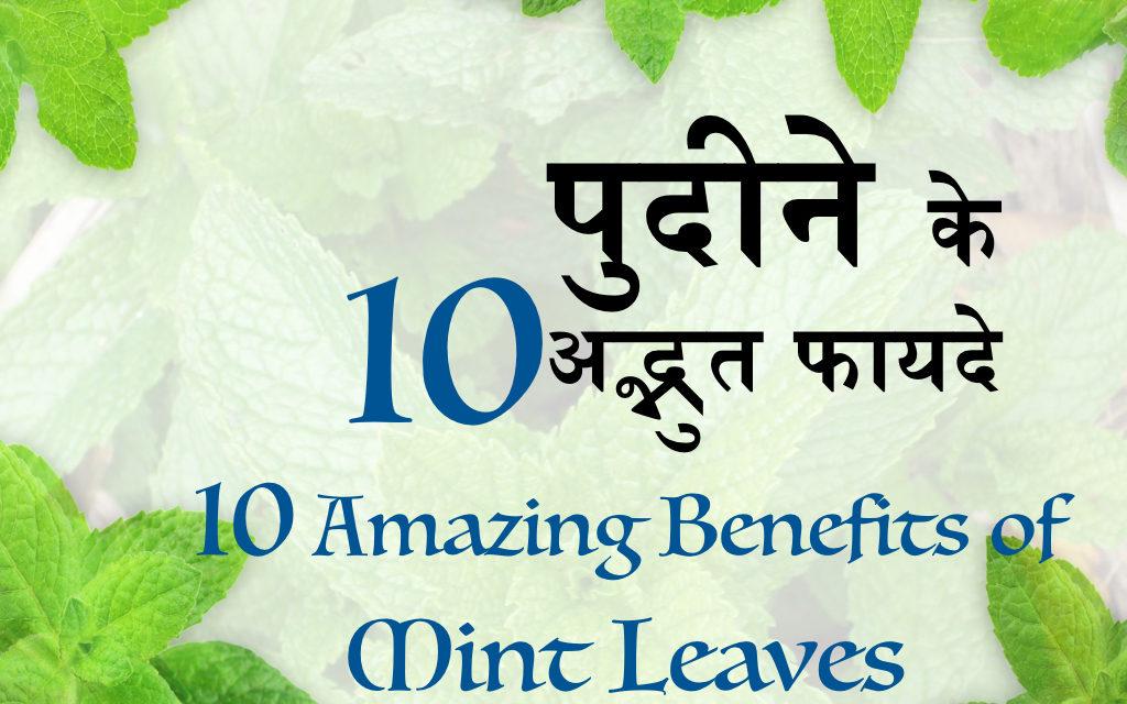 गुणकारी पुदीने की पत्तियां, Health Benefits of Mint Leaves