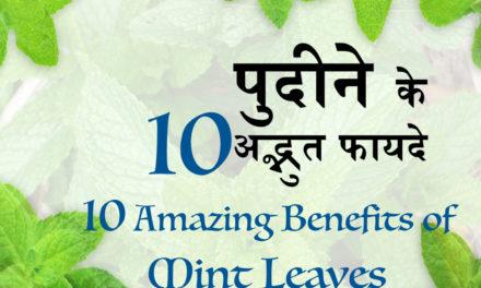 गुणकारी पुदीने की पत्तियां, 10 Benefits Of Mint (Pudina) For Skin And Health