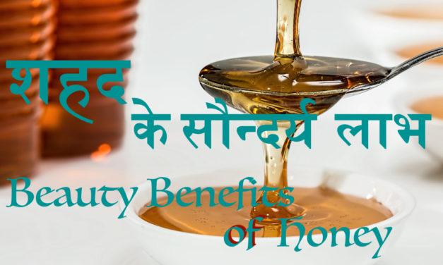 शहद है लाभदायक सुन्दरता के लिए (Beauty Benefits of Honey, Shahad ke Saundarya Laabh)