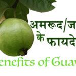लाजवाब अमरूद/जाम (Benefits of Guava)